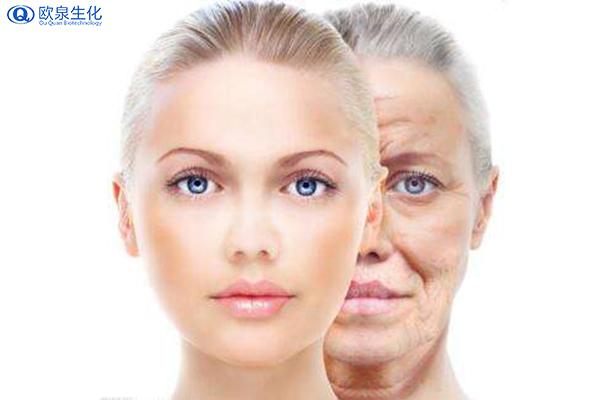 面部皮肤护理是如何分区的-欧泉生化