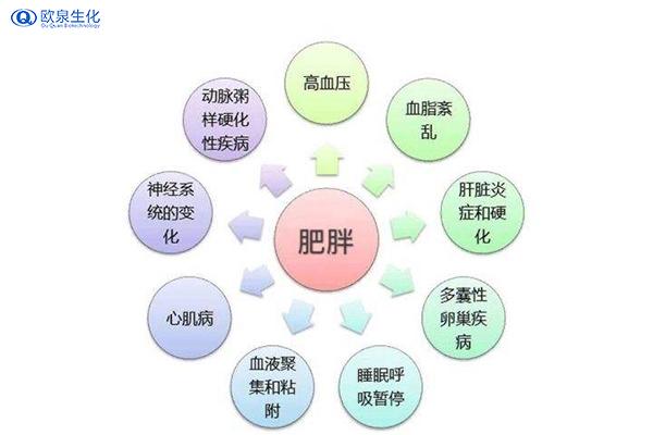 欧泉给你分享健康减肥的办法-欧泉生化