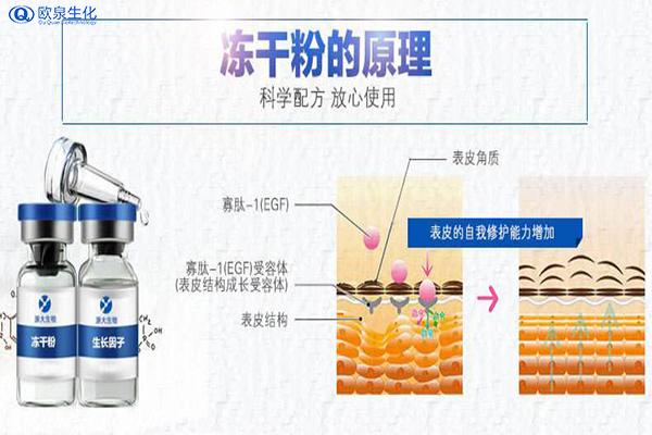 冻干粉面膜到底是什么产品-欧泉生化