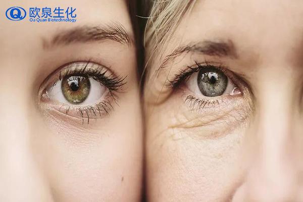 全效眼霜,眼部精华,祛皱眼霜,眼霜
